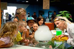 Questacon Canberra | Canberra Education Tours